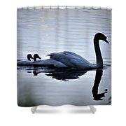 Leading The Way Shower Curtain