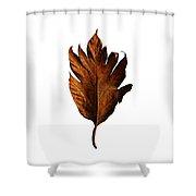 Leaf 0787 Shower Curtain