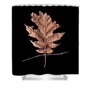 Leaf 22 Shower Curtain