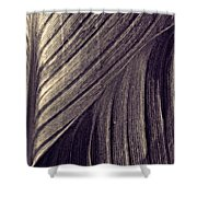 Leaf Abstract  24  Sepia   Shower Curtain