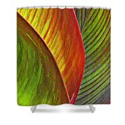 Leaf Abstract 3 Shower Curtain