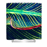 Leaf Abstract 8 Shower Curtain