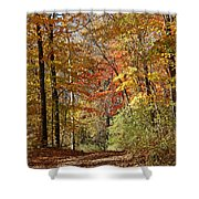 Leaf Covered Path Shower Curtain by Kathy DesJardins