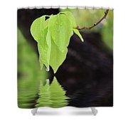 Leaf Drop Shower Curtain