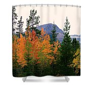 Leaf Embrace Shower Curtain