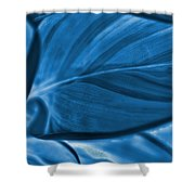 Leaf Of Plant Shower Curtain
