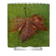 Leaf On Algae Shower Curtain