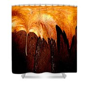 Leaf On Bricks 2 Shower Curtain