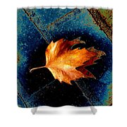 Leaf On Bricks 5 Shower Curtain