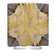 Leaf On Bricks 6 Shower Curtain