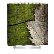 Leaf On Green Wood Shower Curtain