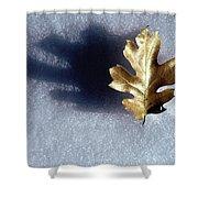 Leaf On Snow Shower Curtain