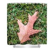 Leaf Resisting The Rain Shower Curtain