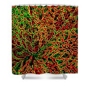 Leaf Segment Abstract Shower Curtain