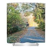 Leaf-strewn Path Shower Curtain
