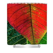 Leafs Macro Shower Curtain by Carlos Caetano