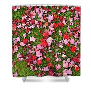 Leafs On Grass Shower Curtain
