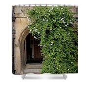 Leafy Archway  Shower Curtain