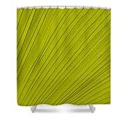 Leafy Leaf Shower Curtain