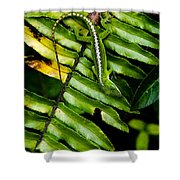 Leafy Lizard Shower Curtain