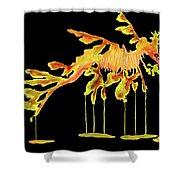 Leafy Sea Dragon On Black Shower Curtain