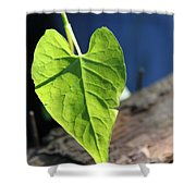 Leafy Veins Shower Curtain