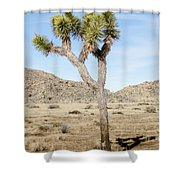 Leaning Joshua Tree Shower Curtain