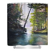 Leaning Tree Lake George Shower Curtain