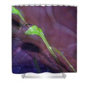 Leaning Waterdrop  Shower Curtain