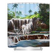 Leaping Waterfall Shower Curtain