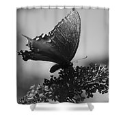 Learn To Fly 001 Shower Curtain