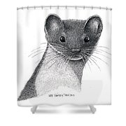 Least Weasel Shower Curtain