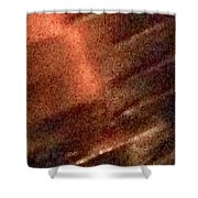 Leather 19 Shower Curtain