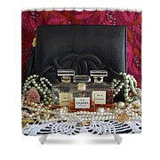 Leather And Lace 2 Shower Curtain