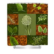 Leaves #2 Shower Curtain