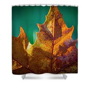 Leaves 971 Shower Curtain