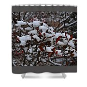 Leaves And Powery Snow Shower Curtain