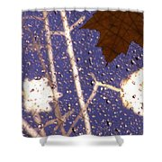 Leaves And Rain 2 Shower Curtain