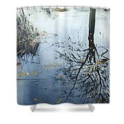 Leaves And Reeds On Tree Reflection Shower Curtain