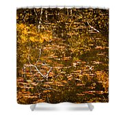 Leaves And Reflections Shower Curtain by Susan Cole Kelly