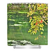 Leaves And Water Shower Curtain