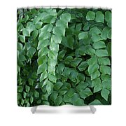 Leaves Cascading Shower Curtain