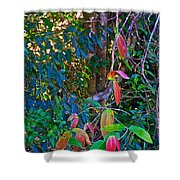 Leaves Changing Color As Autumn Approaches In Iguazu Falls National Park-argentina   Shower Curtain