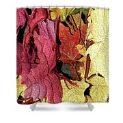 Leaves Fall Shower Curtain