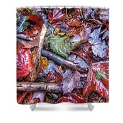 Fall Leaves From The Land North Of Nowhere Shower Curtain