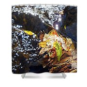 Leaves In River Shower Curtain
