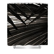 Leaves Of Palm Black And White Shower Curtain