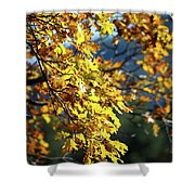 Leaves On Fire Shower Curtain