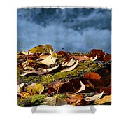 Leaves On Rock By River Shower Curtain