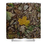 Leaves On The Rocks Shower Curtain